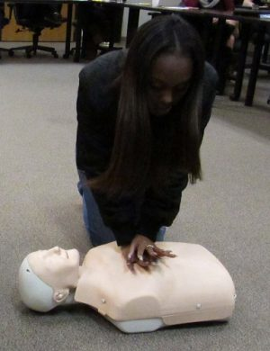 Hillcrest High School Junior Rayel Gilliam begins compressions on her CPR dummy in order to practice crucial life-saving skills.