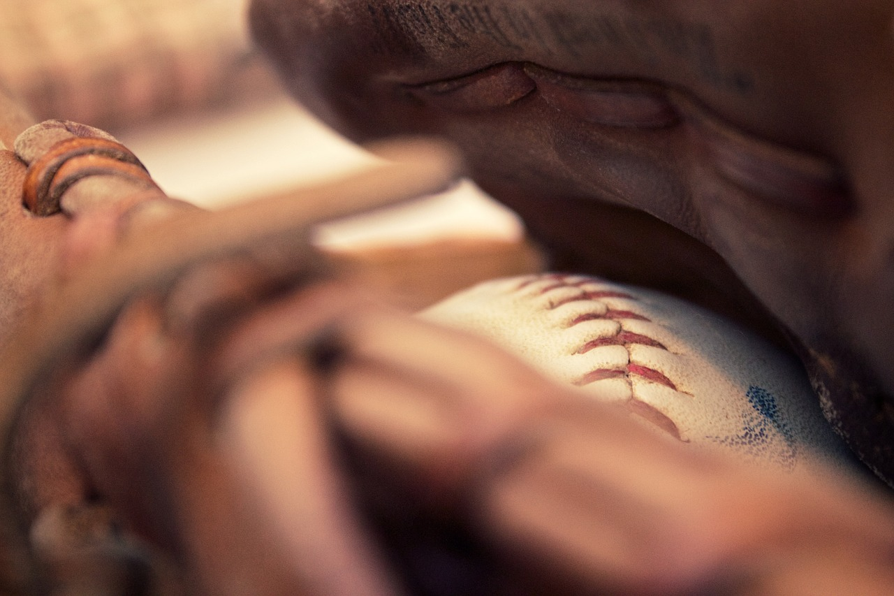 Baseball+2017